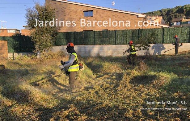 Desbroce limpieza parcelas terreno exterior Barcelona Catalu�a forestal Sant Cugat Valles Sant Vicen� Montalt Andreu Llavaneres Tiana Alella Cabrils Premia Mar Dalt Cabrera Argentona jardiner jardineria tala
