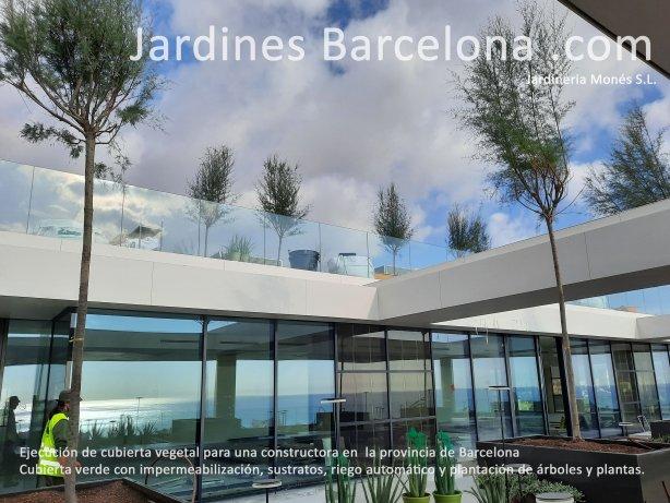 Jardineria Mon�s ejecutando una cubierta vegetal para una constructora en Barcelona. Cubierta verde extensiva e intensiva con impermeabilizaci�n, sustratos, riego autom�tico y plantaciones de �rboles y plantas