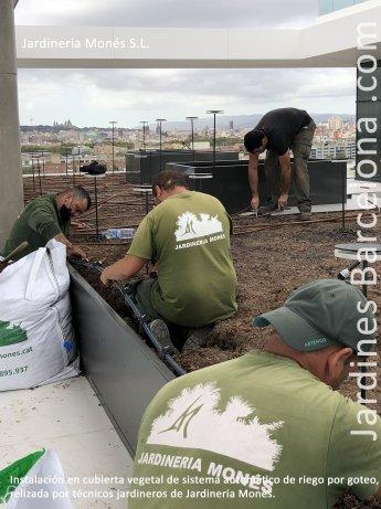 Jardineros instalando un sistema de riego autom�tico por goteo en una cubierta vegetal en Barcelona