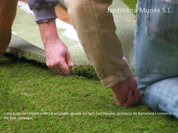 Los jardineros de Jardineria Mon�s estan instalando este c�sped artificial en un jardin en Sant Just Desvern, provincia de Barcelona y comarca del Baix Llobregat