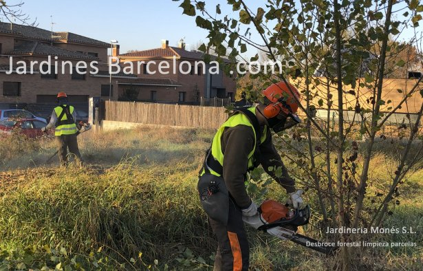 Desbroce limpieza parcelas terreno exterior Barcelona Catalu�a forestal Sant Cugat Valles Sant Vicen� Montalt Andreu Llavaneres Tiana Alella Cabrils Premia Mar Dalt Cabrera Argentona jardiner jardineria malas hierbas