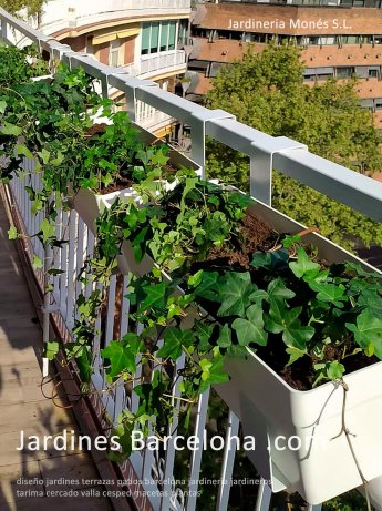 Tarima terrazas patios patio jardin exterior Barcelona tarima plantas dise�o Sant Cugat Valles Vicen� Montalt Andreu Llavaneres Tiana Alella Cabrils Badalona Mar Dalt Cabrera Argentona pavimento valla cesped