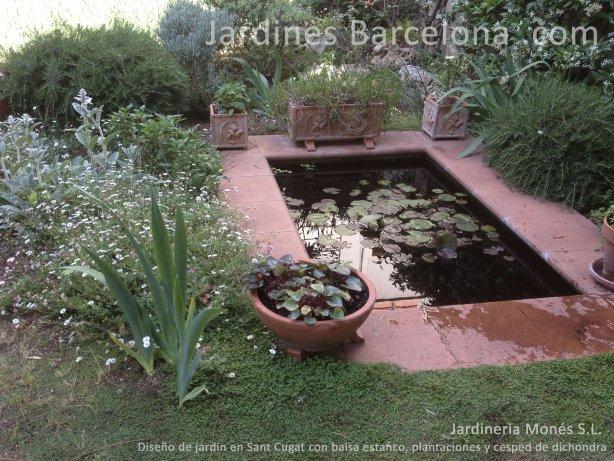 Jardineria Mones ha dise�ado  este jardin en Sant Cugat, provincia Barcelona y comarca el Valles donde podemos apreciar una balsa estaco piscina, plantacions i cesped natural dichondra