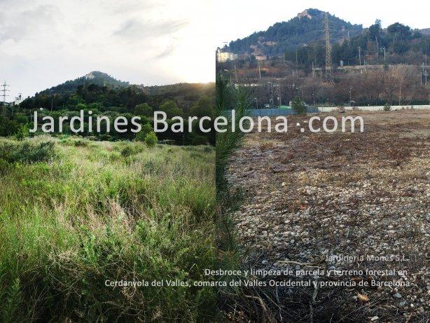 Desbroce y limpieza de parcela i terreno realizada por los jardineros de Jardineria Mones con medios mec�nicos en la poblacion de Cerdanyola del Valles, comarca del Valles occidental y provincia de Barcelona