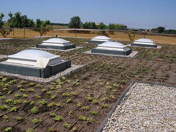 Cubiertas vegetales o invertidas instalaci n de cubiertas - Cubiertas vegetales para tejados ...