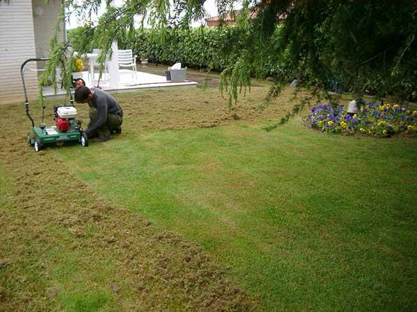 Mantenimiento de jardines servicio para particulares y for Jardines particulares